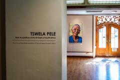 Tswela Pele: Installation 3